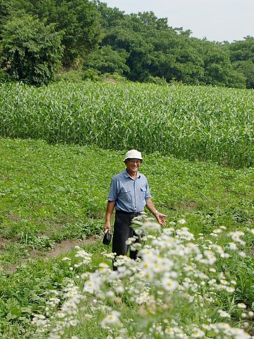 畑と高村さん