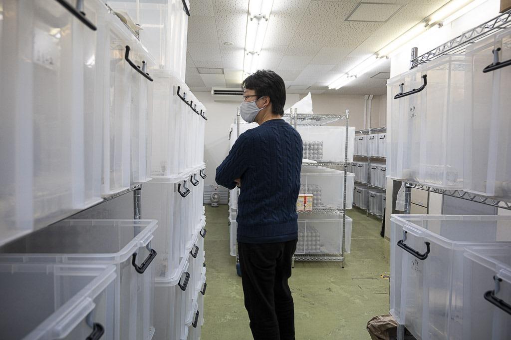 コオロギ生産ベンチャー「グリラス」の養殖場